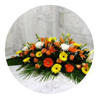 Cyprès et fleur d'oranger